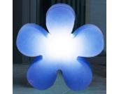 Dekorative Leuchtblume SHINING FLOWER, blau