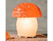Tolle Salzleuchte PILZ in Pilzform